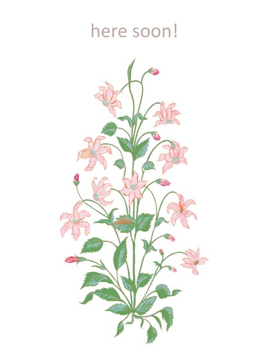 kimono : wildflower rust